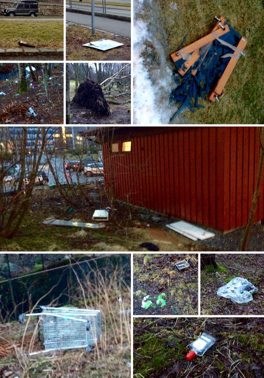 2 - Boss i Fyllingsdalen Bergen