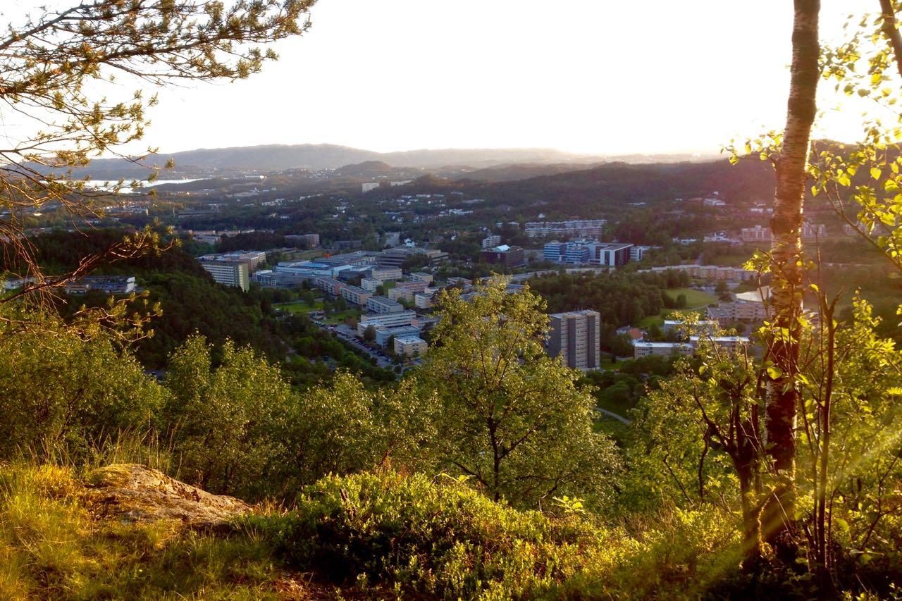 Utsikt utover Fyllingsdalen